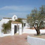 Haus-Olivetum_Colina-604x270